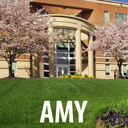 amy-icon-photo-success-story